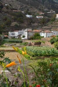 La Gomera, Hotel Anaterve, wandelvakantie