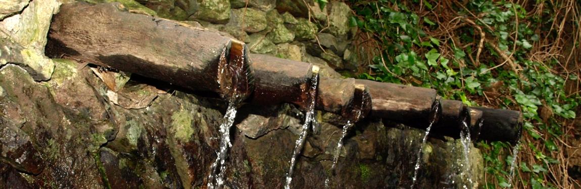 La Gomera, natuur, wandelen, wandelpaden, natuur, laurierbossen