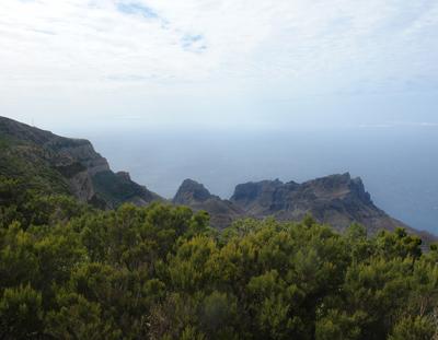 Garajonay, La Gomera, laurierbossen, natuur, wandelen, wandelpaden, wandelgebied